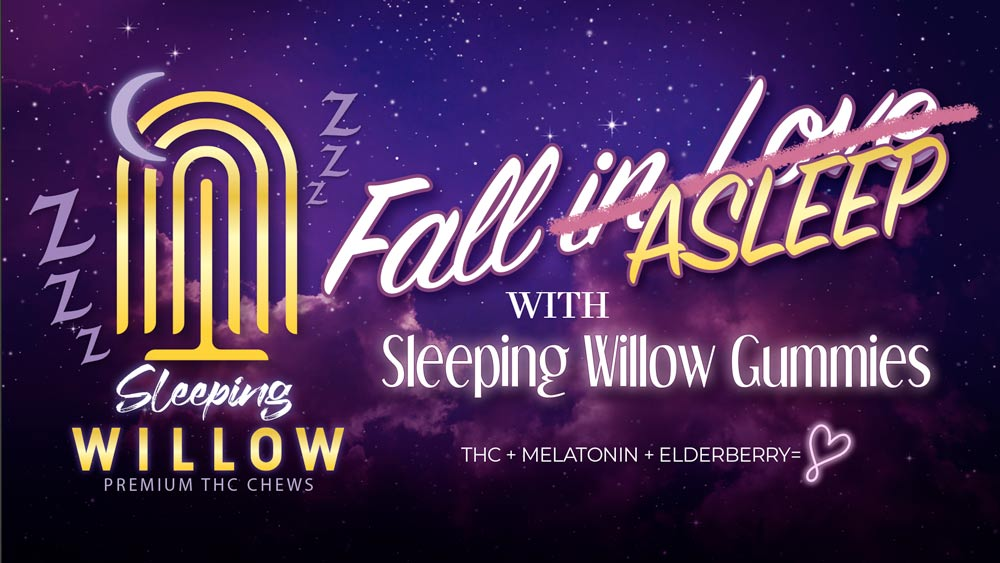 WillowSleeping-banner