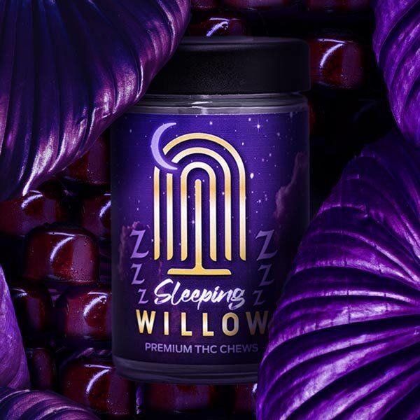 sleep-willow-3